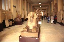 egyptian-museum
